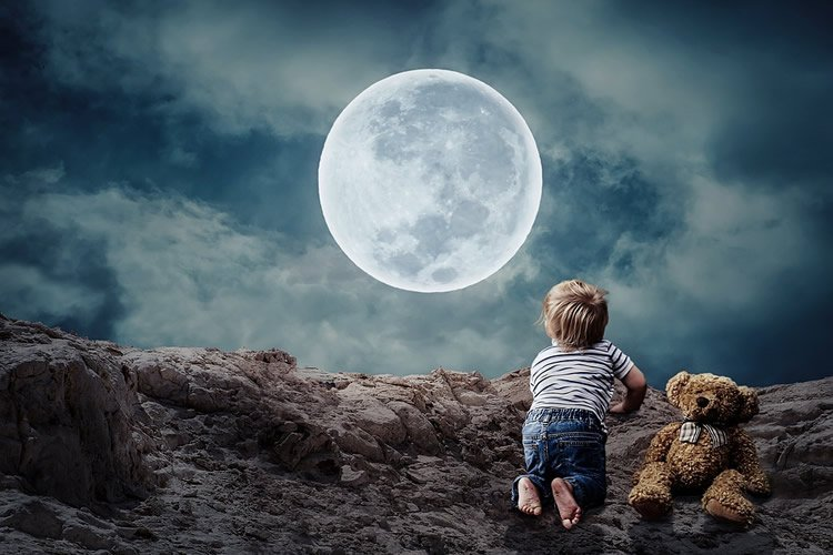 a child and teddy bear in the moonlight