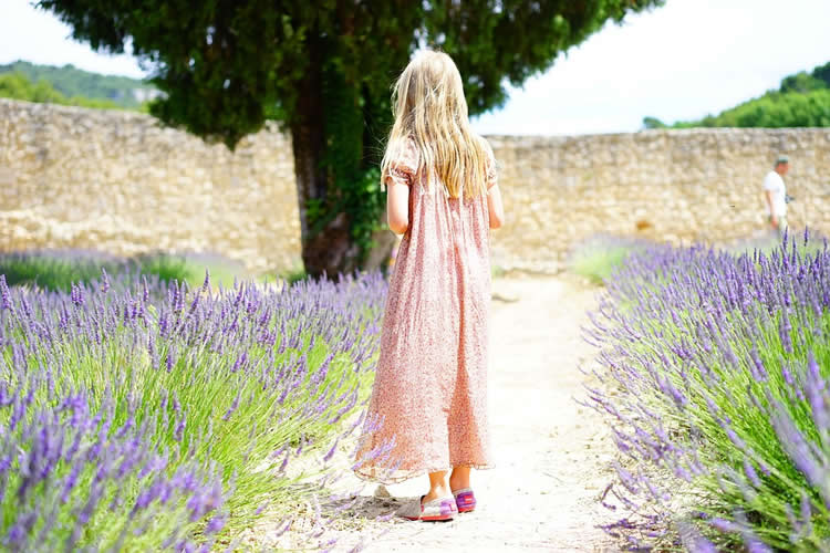 a girl in a lavender field
