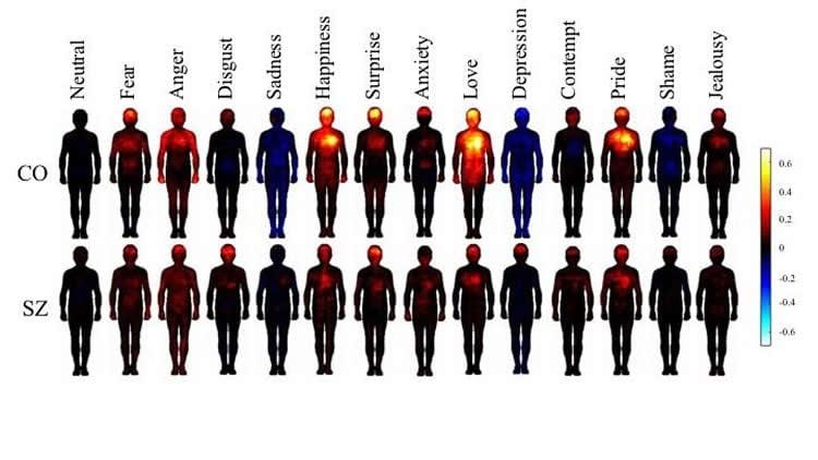 body maps