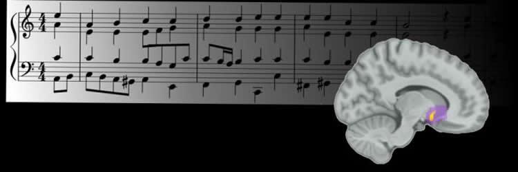 brain and sheet music