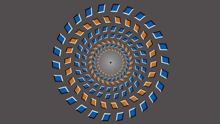 pinna illusion