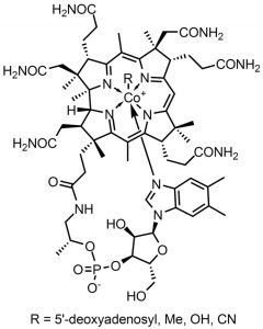 This shows the chemical structure of vitamin b12