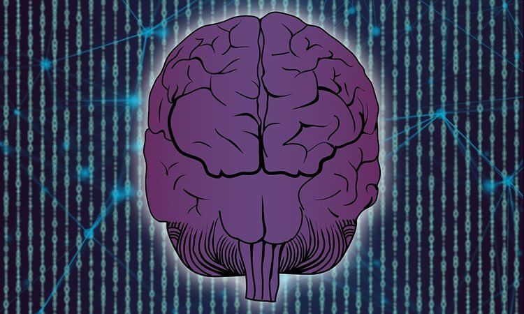 This shows a purple brain and dna