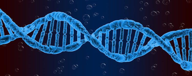 This shows a blue DNA double helix