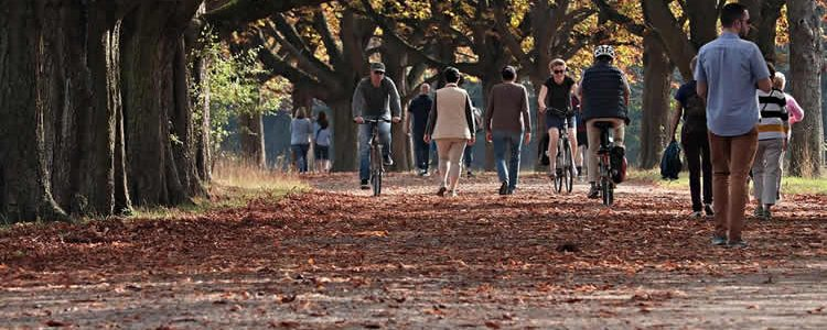 This shows people walking and cycling in a park