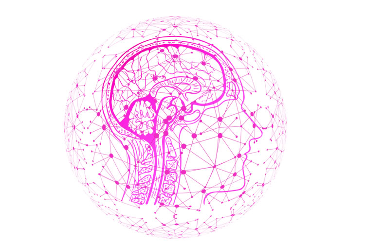 This shows a pink head with a brain outlined and network like dots