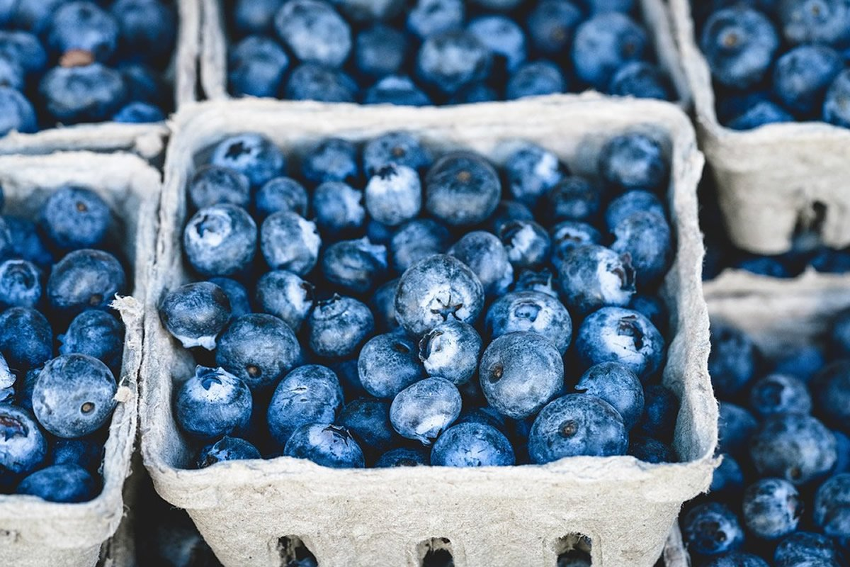 This shows blueberries
