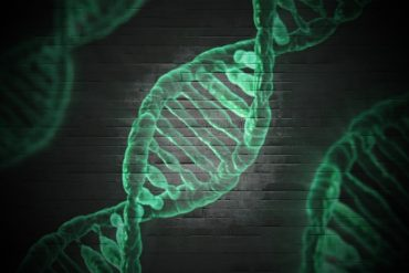 This shows green dna strands