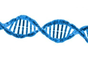 This is a DNA double helix