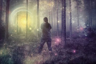 This shows a light shining through trees and a man looking at it
