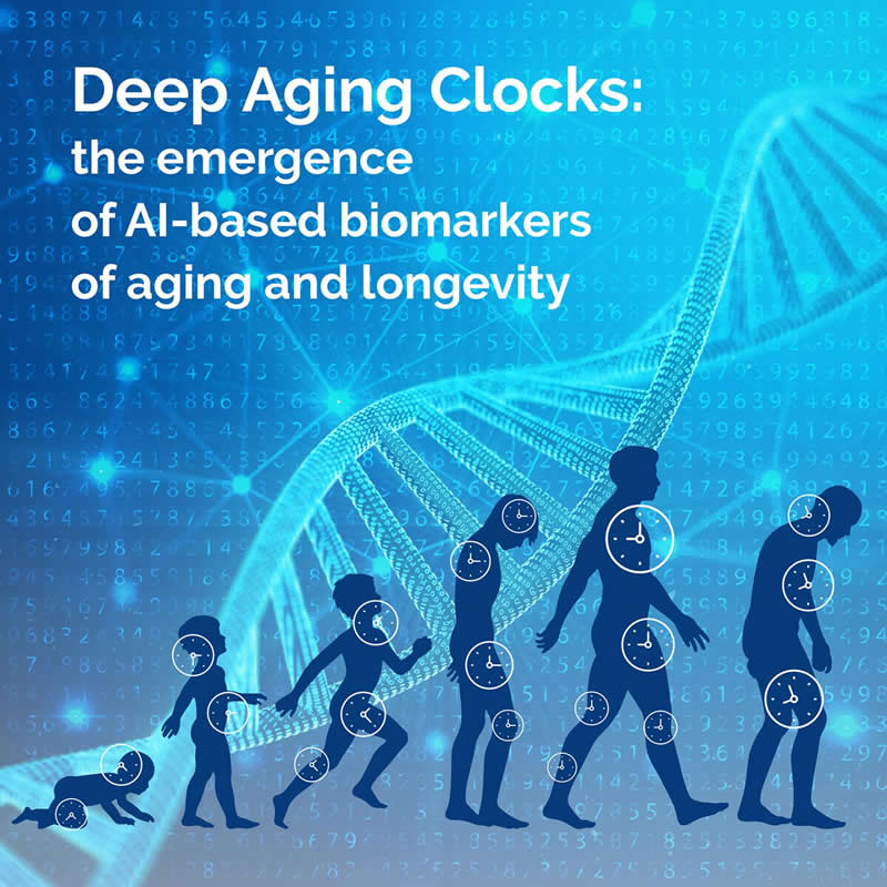 This shows the aging process and a DNA strand