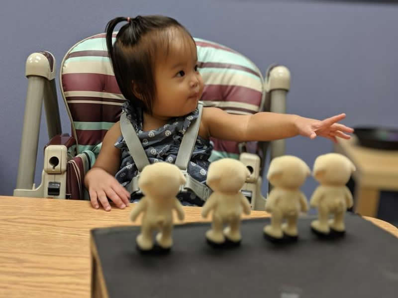 This shows a toddler with four dolls in front of her