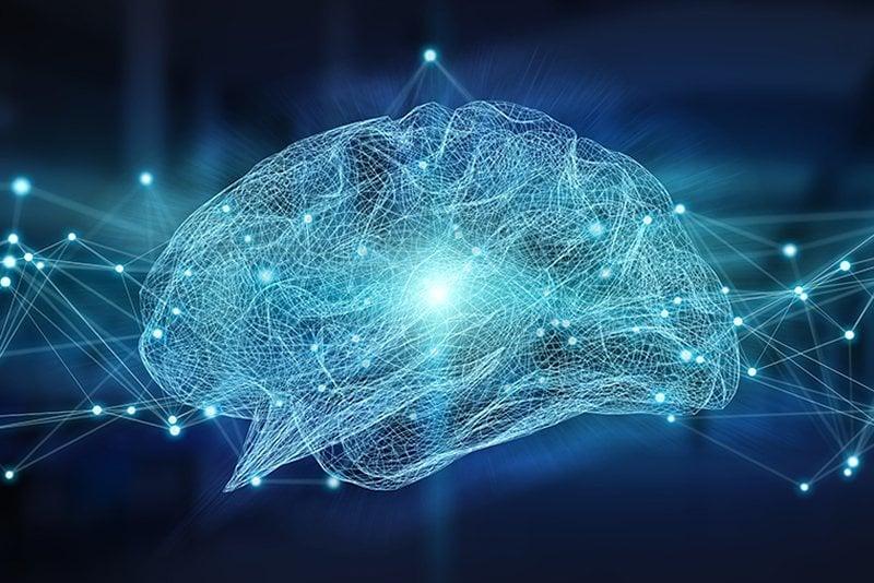 This shows a blue brain
