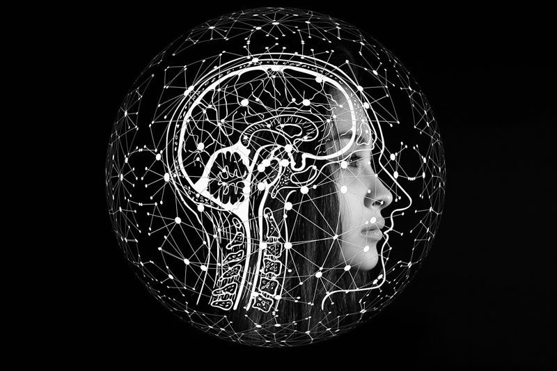This shows a woman's head with a network of dots drawn on it
