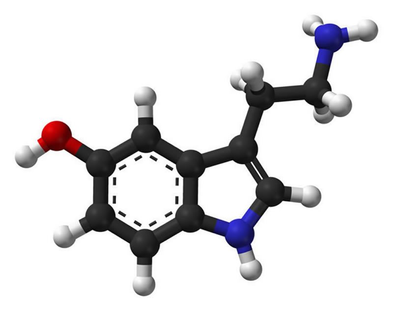 This shows a stick and ball model of serotonin