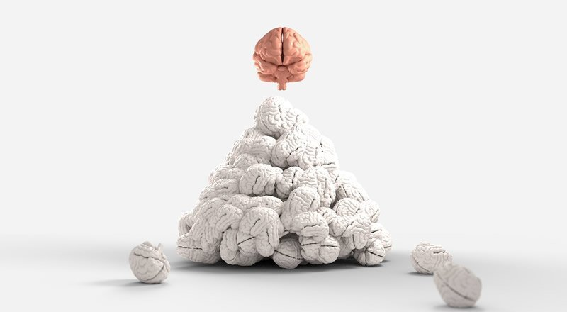 This shows a pink brain on top of a pile of white brains