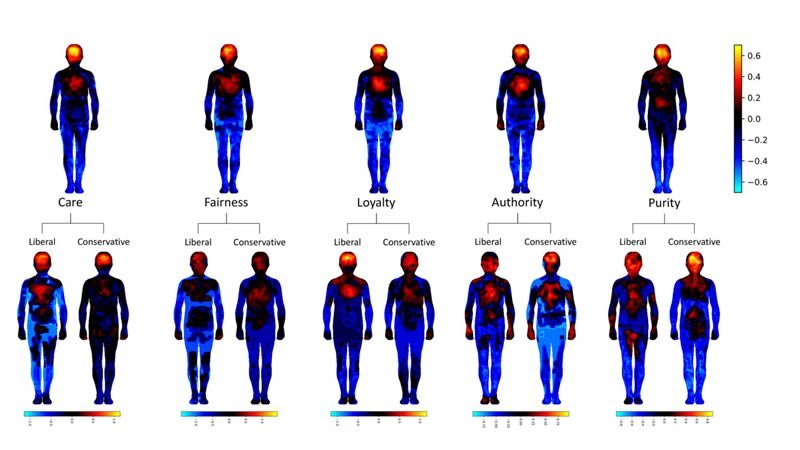 This shows the body maps from the study