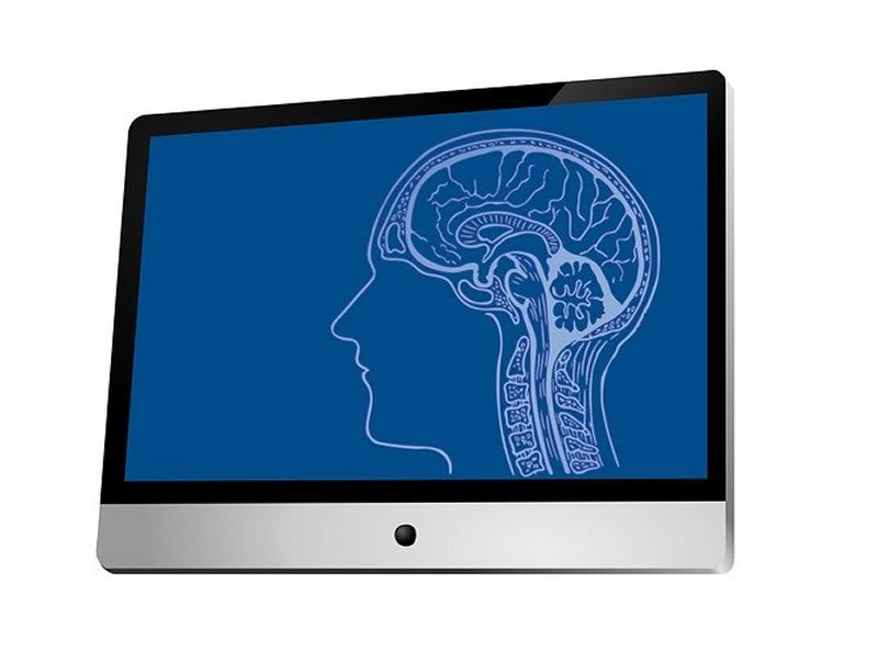 This shows a brain on a computer screen