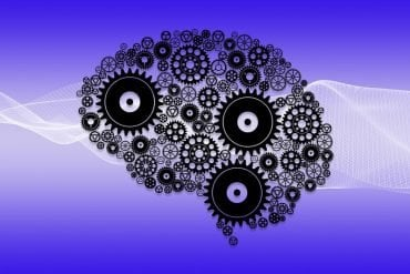 This shows a drawing of a brain made up of cog wheels