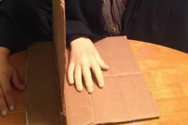 This shows the rubber hand illusion