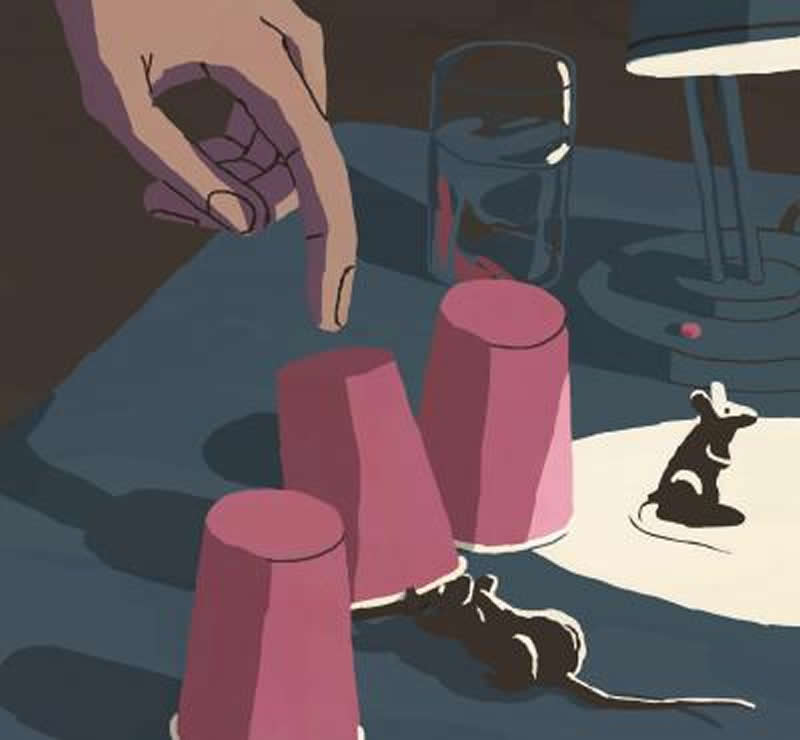 This shows mice and cups