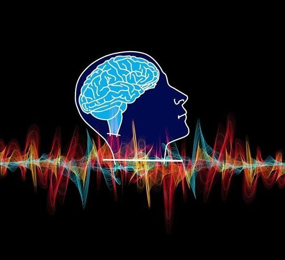 This is a drawing of a brain and brain waves