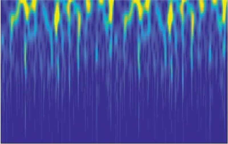This shows the firing patterns of the neurons