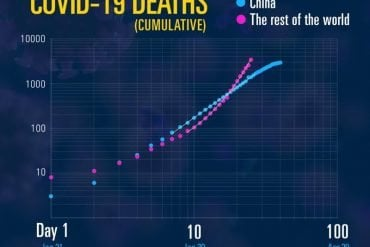 This shows a graph