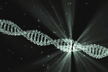 This shows a DNA strand