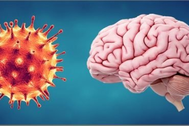 This shows a brain and covid19