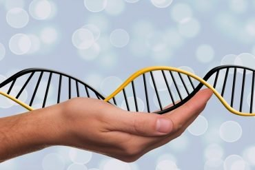 This shows a hand holding a dna strand