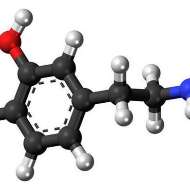 This is a stick and ball model of dopamine