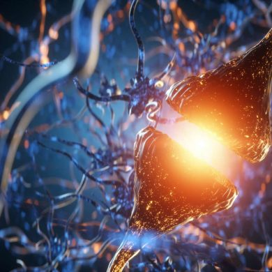 This shows a synapse