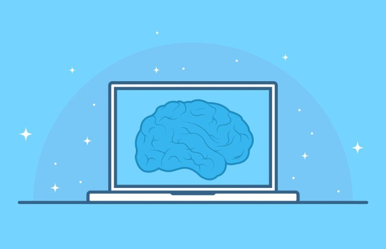 This shows a brain on a computer monitor