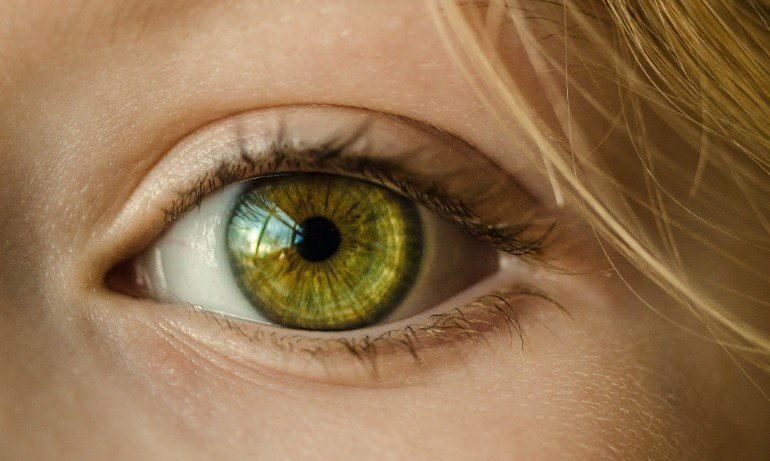 This shows an eye