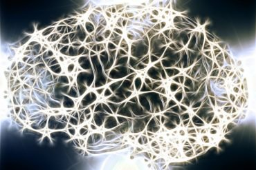 This is a computer generated image of a brain made up of computerized neurons