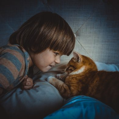 This shows a little boy with a cat