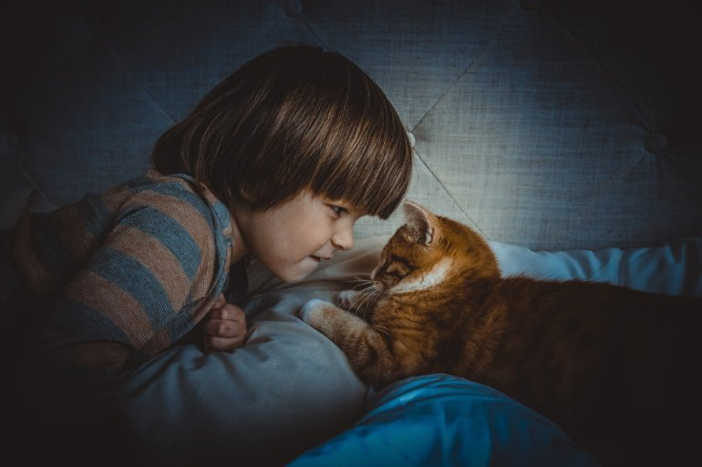 cat empathy autism neurosciencnews.