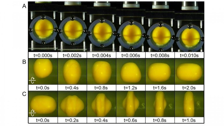 This shows an egg yolk at different phases to relay head trauma