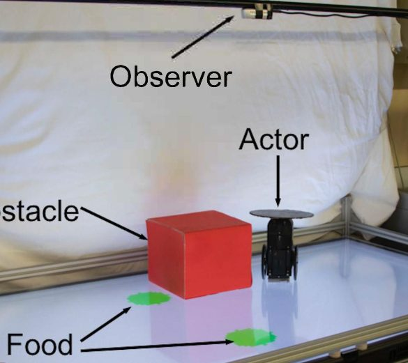This shows the location of objects mentioned in the study