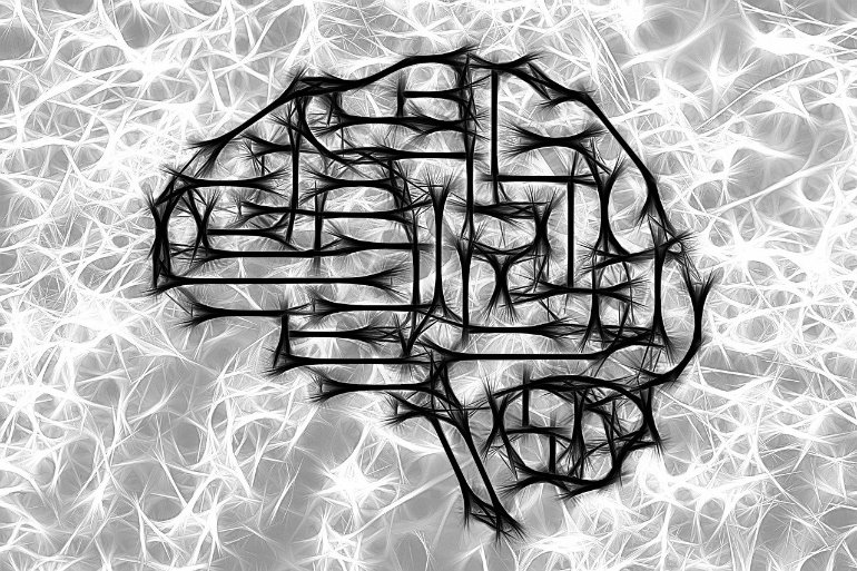 This is a drawing of a brain and neurons