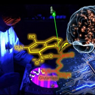 This shows a brain, a neuon chemical element and a brightly lit researcher