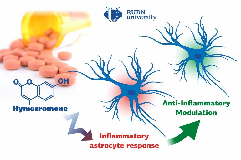 A New Substance to Suppress Neuroinflammation