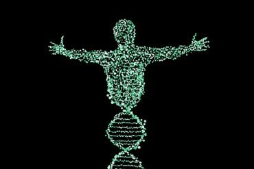 This shows a drawing of a body made up of dna double helixes