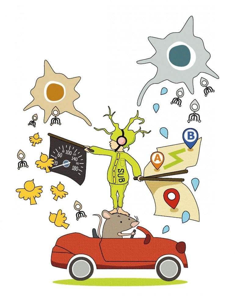 This is a cartoon of a person standing on top of a car being driven by a mouse, directing neurons with a flag