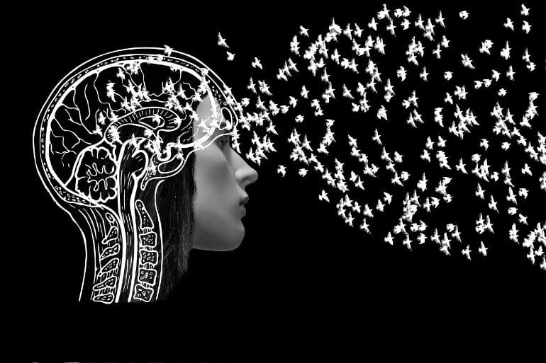 This shows an outline of a woman's head, brain and birds flowing in it