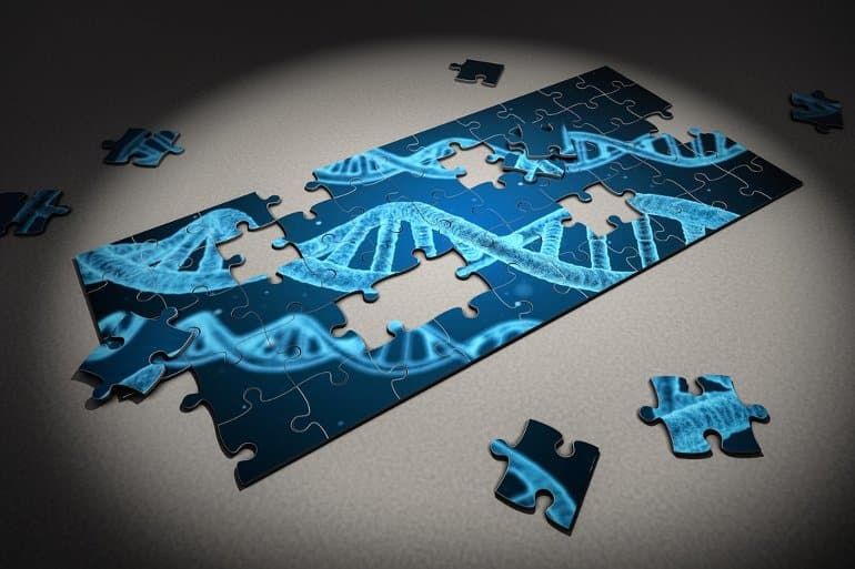 This shows a jigsaw of DNA