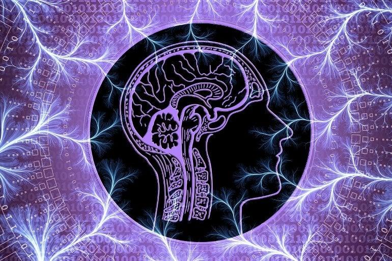 Esto muestra un cerebro