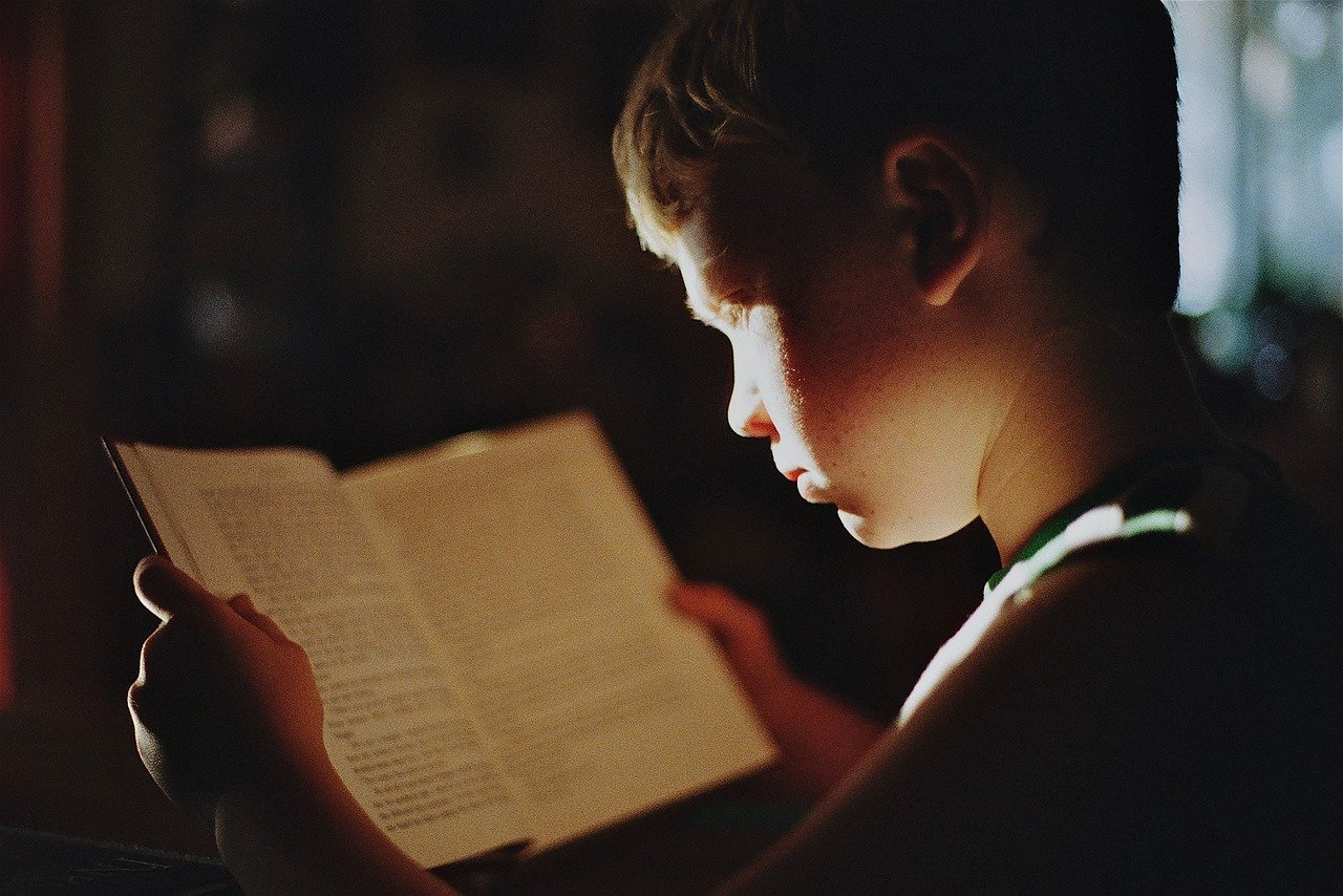 This shows a little boy reading a book
