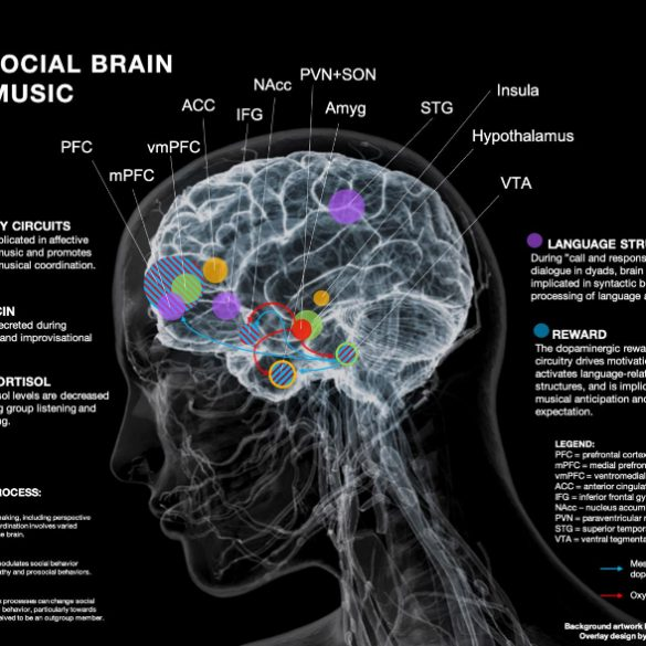 This is an image of the brain and an explanation of what happens when people collaborate on musical pieces